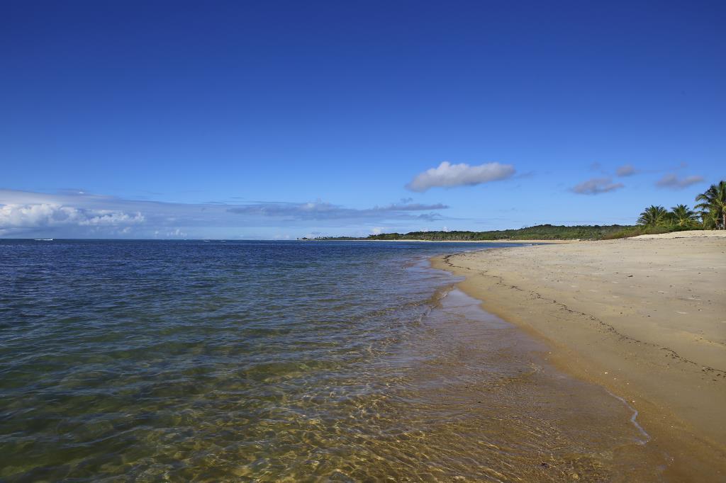 Piede unico e grande della spiaggia nell'area 11